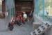 Agriturismo Il Gallo dei Don - Photogallery